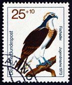 Postage Stamp Germany 1973 Osprey, Bird Of Prey