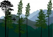 illustration with forest in mountains