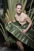 foto of implied nudity  - Handsome naked man covered by a palm frond - JPG