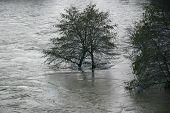 Rio americano de inundação 1