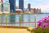 View on Manhattan from Roosevelt Island in spring.