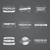 Vintage premium quality stickers and elements black vector set