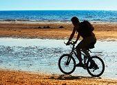 Mountain Biker On The Beach