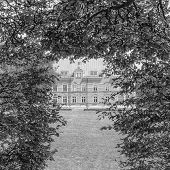 Palsjo Slott Through The Trees Mono