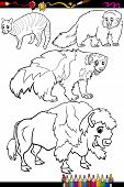 Animals Set Cartoon Coloring Book
