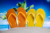 Flip flops and sand