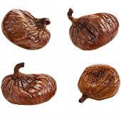 set of single fig fruit close up isolated on white background