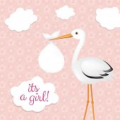 Stork With Baby Girl With Gradient Mesh, Vector Illustration