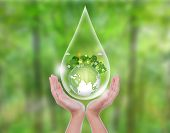Woman hands over green forest hold water drop of  eco friendly earth