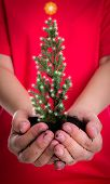 Woman hands hold small christmas tree