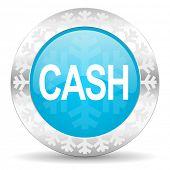 cash icon, christmas button