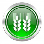 agricultural icon, green button