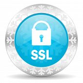 ssl icon, christmas button