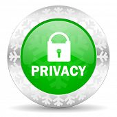 privacy green icon, christmas button