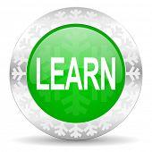 learn green icon, christmas button
