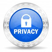 privacy blue icon, christmas button