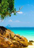Cozy Landscape Serenity Shore