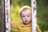 Little boy crying  in garden.