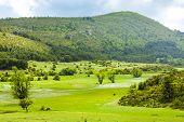 landscape near Verdon, Provence, France