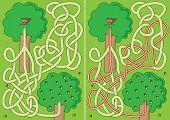 Cartoon Squirrel Maze