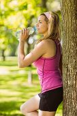 Fit blonde leaning against tree drinking water on a sunny day