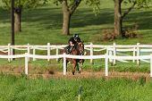 Race Horses Jockeys Training Track