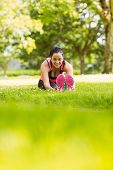 Fit brunette warming up on the grass in the park