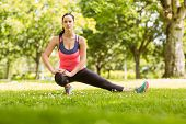 Fit brunette stretching on the grass in the park