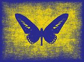 Blue Butterfly Silhouette On Grunge Yellow Background.
