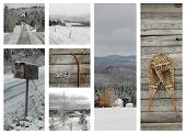 Collage showing winter by landscape, sports and scenic view