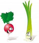 Radish And Onion