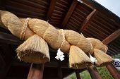 The Gold Rope Of Izumo Shrine In Izuma