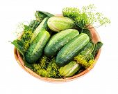 Cucumbers And Dill Leaves Still Life In Wooden Bowl Isolated On White Background.