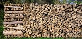 Panorama - Wide woodpile