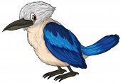 Illustration of a small blue bird