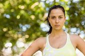 Focused athletic brunette in the park on a sunny day