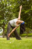 Relaxed brunette doing yoga on grass in the park