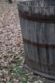 Barrel To Harvest Grapes During The Harvest And Wine Making