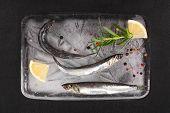 Fresh Sardines Fish On Ice.