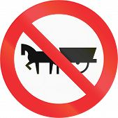 pic of carriage horse  - Chilean sign prohibiting thoroughfare of horse drawn carriages - JPG