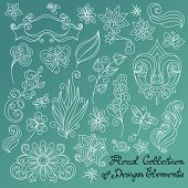 stock photo of dragonflies  - Vector Floral Collection of Hand Drawn Design Elements - JPG