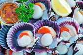 pic of scallops  - scallops with oil and salt on the tray - JPG