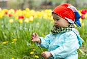 pic of gathering  - Adorable toddler girl gathering flowers in the garden