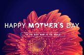 image of greeting card design  - Happy Mother day quote concept vintage retro flower close up background ideal for greeting card and poster design - JPG