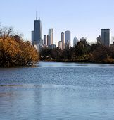 Chicago Skyline Lincoln Park