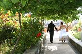 The groom and the bride on walk