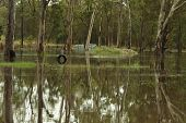Brisbane, Australia - Jan 25 : One Year On Brisbane Flooding Again, Tyre Swing Flooded Burpengary Ja