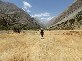 Man Hiking. Wanderlust Time. Man Hiking In Beautiful Fann Mountains In Pamir, Tajikistan. Central As poster