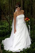 Bride N1