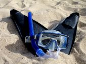 Snorkel Gear And Fins